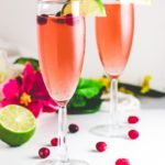 Christmas Mocktail - Cranberry Hibiscus Shrub with Ginger ale and Lime